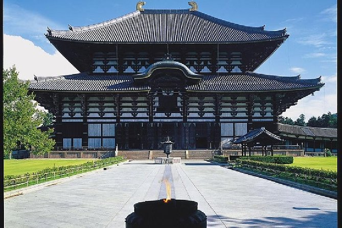 Kyoto and Nara 1 Day Trip - Golden Pavilion and Todai-ji Temple from Osaka