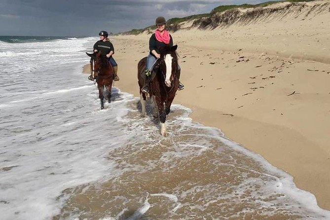 1 day trip to Macaneta beach + horse ride