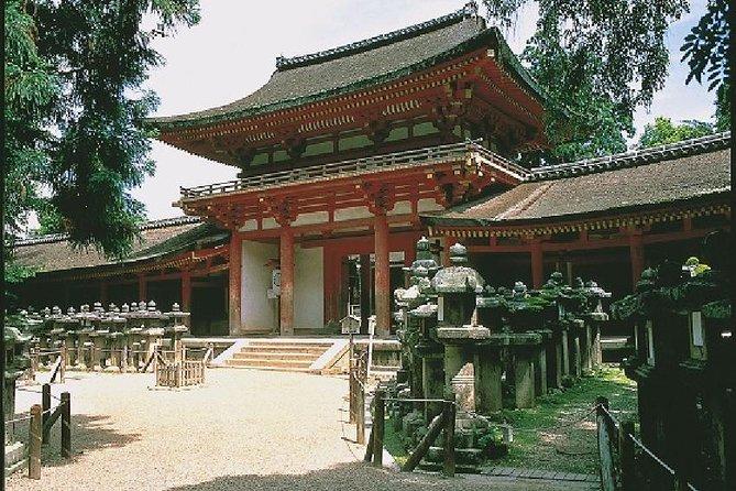 Nara Afternoon Tour - Todaiji Temple and Deer Park from Kyoto