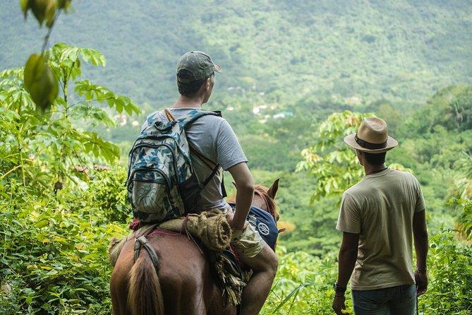 "on horseback to the sacred ancestral stone ""mama duwanaby""."