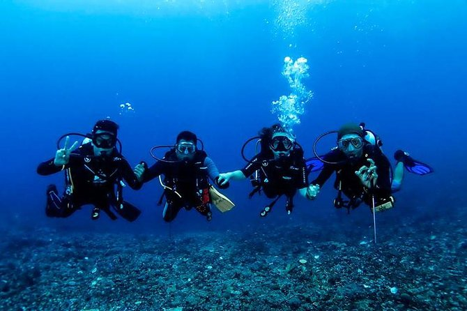 Snorkeling and Diving trip