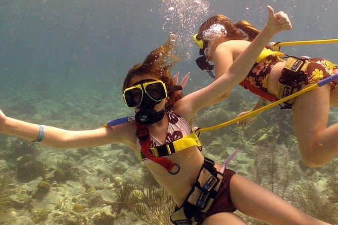 Snuba Adventure at Coral World Ocean Park