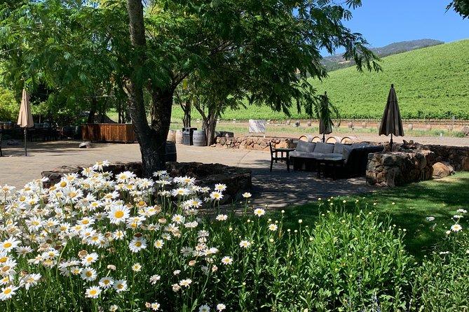 8-Hour Private Sonoma or Napa Wine Tour with Concierge Service