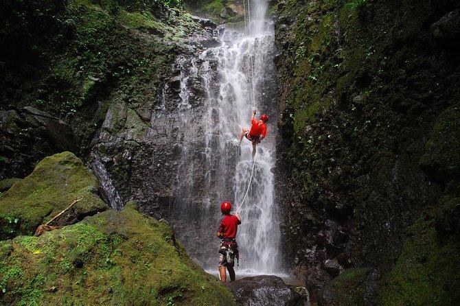 Costa Rica Adventure Package Beach and Rainforest 8 Days