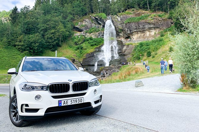 Full day Hardangerfjord with VIP car + private yacht Fjord cruise