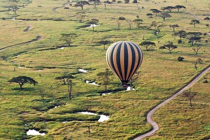 Masai Mara, Serengeti & Ngorongoro, Let Your Luxurious Migration Safaris Begin!