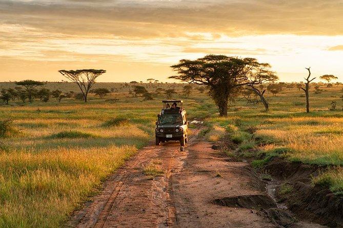 2 Days Tarangire & Ngorongoro Crater Safari