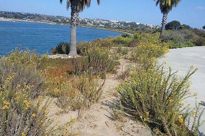 Bike Around San Diego Bay to the Ocean