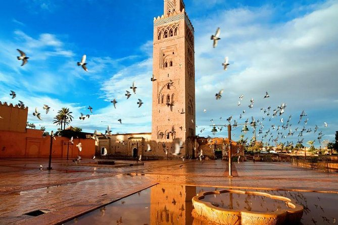 Full day trip to Marrakech from Casablanca