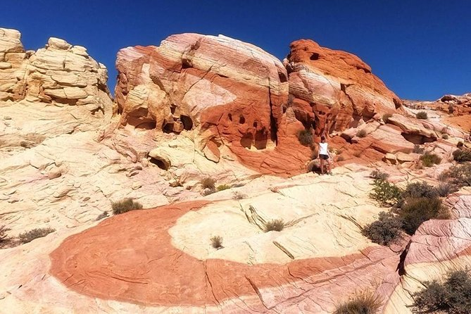 Valley of Fire & Wildlife Viewing Photo Tour from Las Vegas