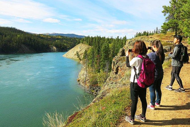 Arctic Day: Hiking Tour | half day