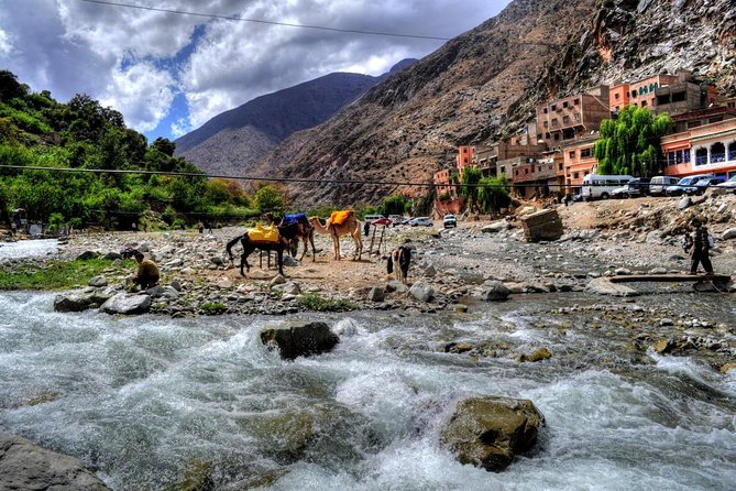 Group shared day tour to Ourika valley & Atlas Mountains