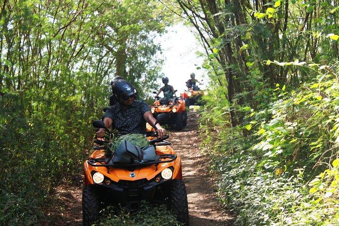 Bora Bora ATV & SHOPPING TOURS