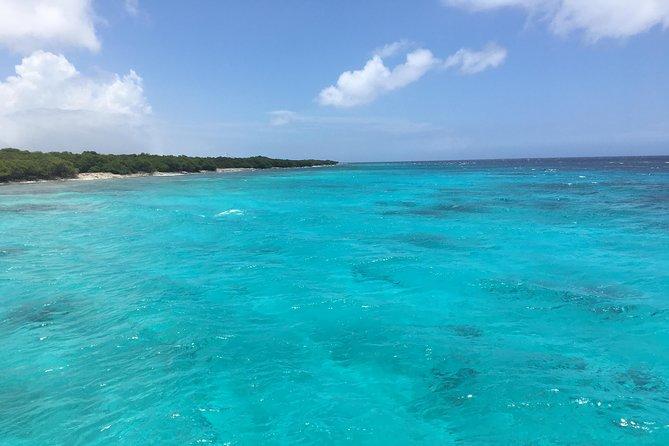 Eco-friendly hike & snorkel excursion: Aruba's highest point & pristine reef