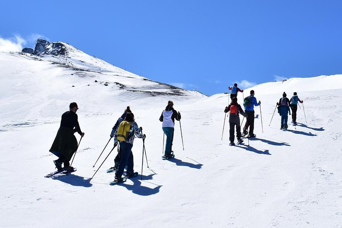Hiking with snowshoes in Sierra Nevada for beginners (Granada)