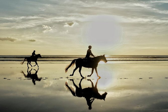 Horse Riding By The Beach With Hammam And Massage