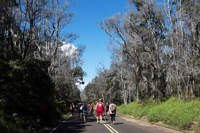 Volcanoes National Park Tour