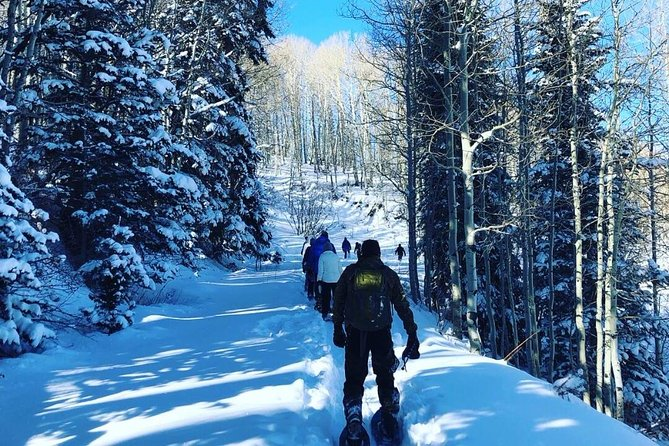 Guided Snowshoe Excursion