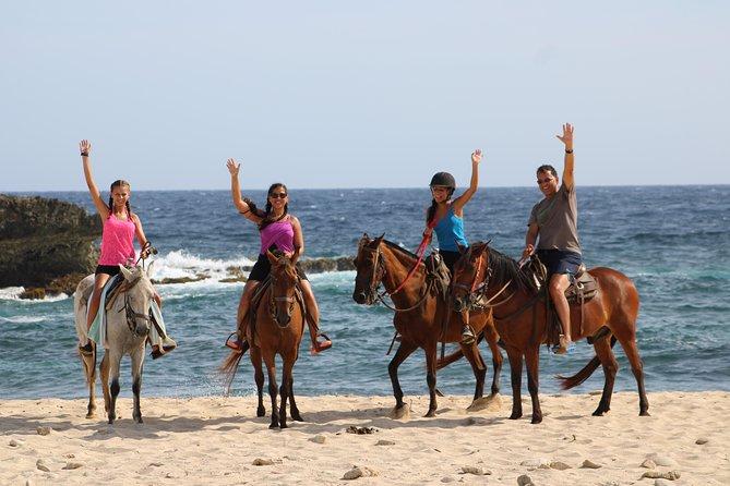 Horseback Adventure on the Northern coast