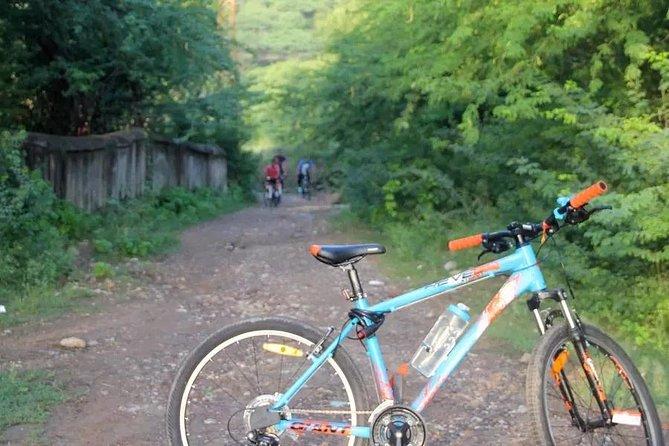 Udaipur to Jhadol Biking - A Guided Tour