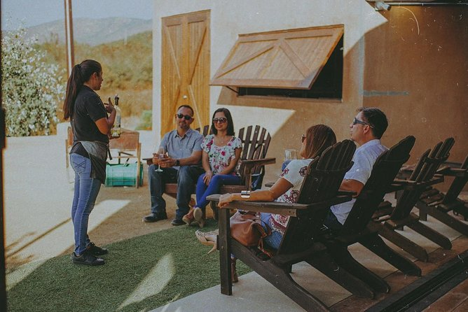 Wine Tasting and Wine Tour in Valle de Guadalupe