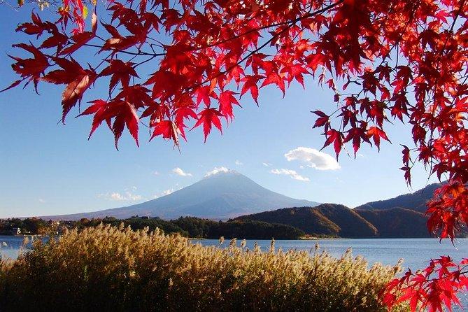 1 Way Day Tour Tokyo - Takayama via Mt. Fuji and Suwako