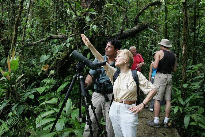 Birding Watching tour from San José