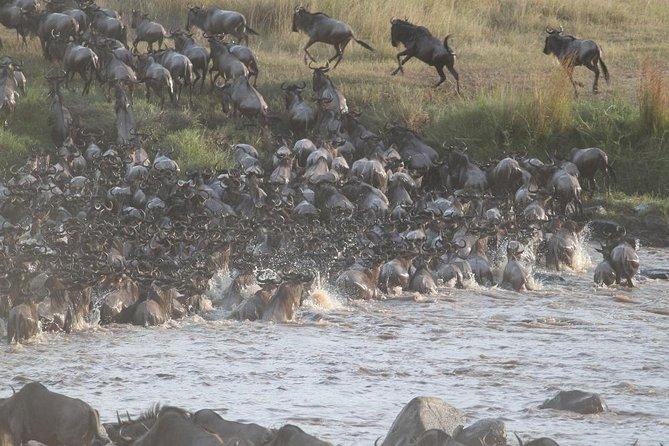6 Days Wildebeest Migration Safari