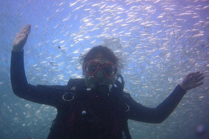 Baptism - Discovery Scuba Diving