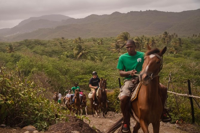 East Coast Horseback Riding Excursion St. Lucia