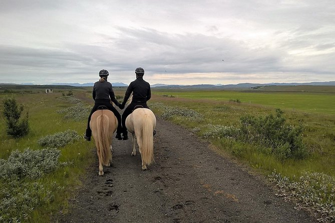 Horseback Riding in the Icelandic Meadows with Mountain Views