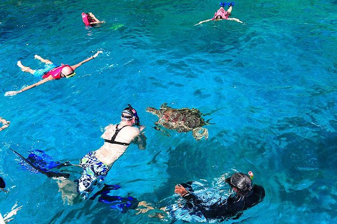 Similan Islands Snorkeling Tour By Sea Star Andaman From Khao Lak