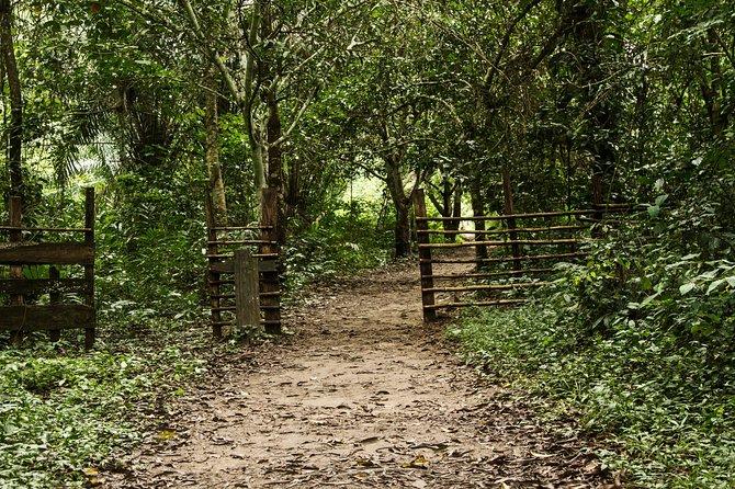 Slave Routes & Market Pilgrimage Day Tour