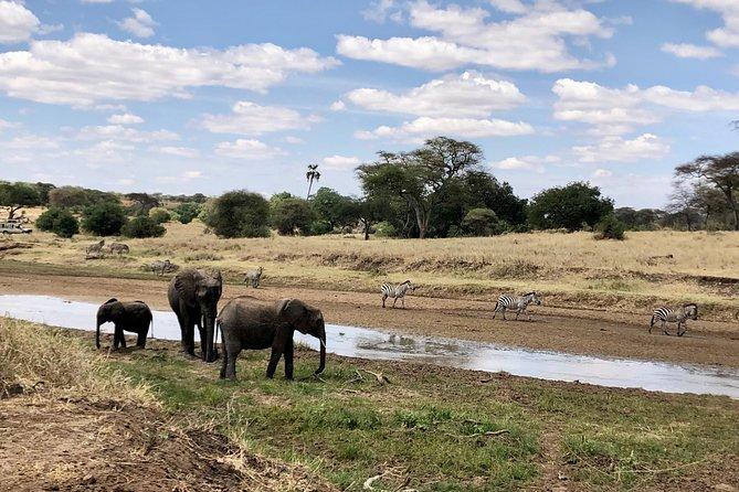 Three day/ Two night Safari to Tarangire and Ngorongoro Crater