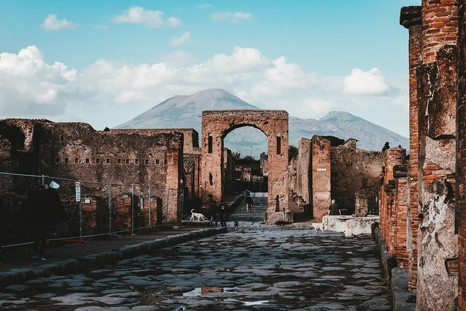 Pompeii, Herculaneum and Vesuvius from Naples