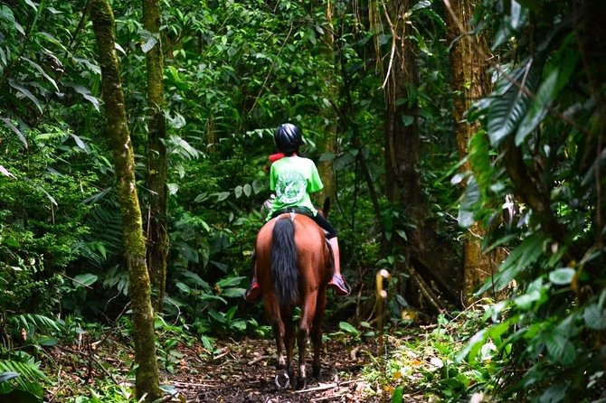 Horseback Riding to the Volcano at Arenal Wilberth Stable