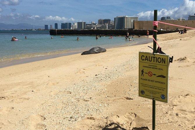 The East Waikiki Walking Tour