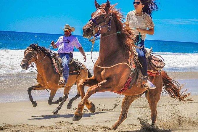 Horseback Riding & ATV Combo! Mountain Trails & Beautiful Beaches of BAJA!
