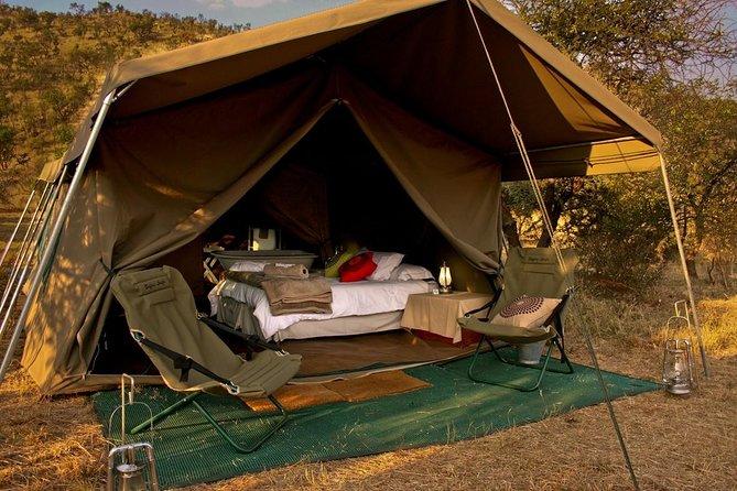 5 Days Tanzania Luxury Safari(lake Manyara, Serengeti & Ngorongoro)