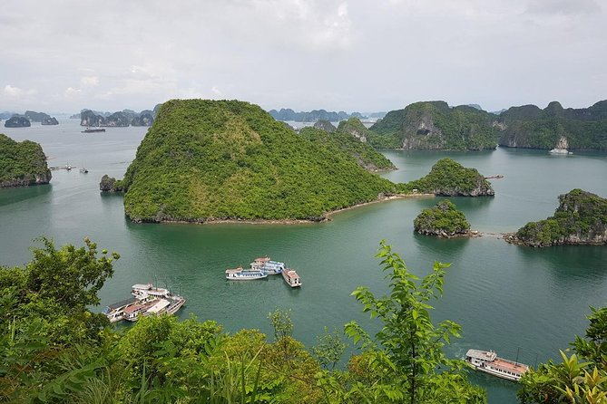 Shore Excursion: Wonderful Ha Long Bay Day Cruise