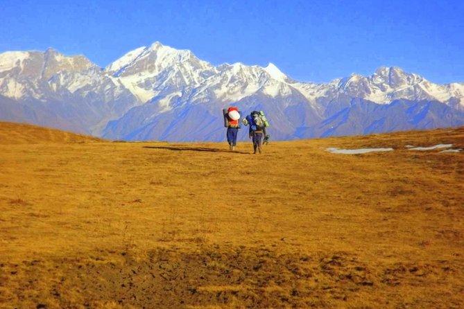 Dayara Bugyal Himalayan Trekking and Camping
