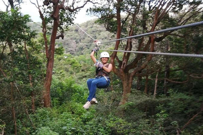 Zip line, Hot Springs, horses and More