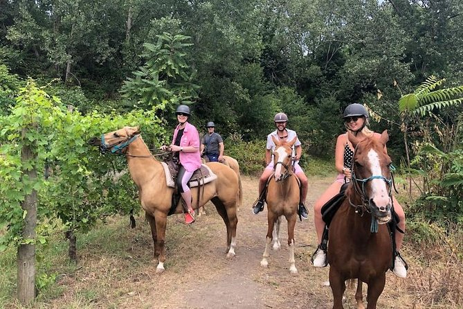 Pompei Ruins & Horseback riding on Vesuvius with Lunch from Sorrento!