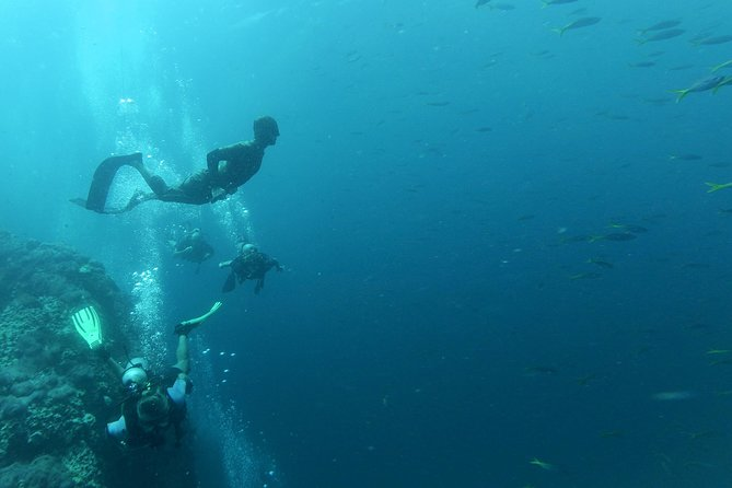 Breath-Hold Diving Initiation (FreeDiving)