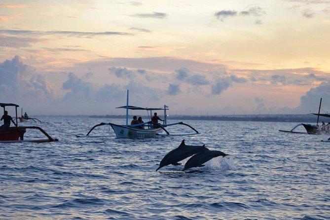 Dolphins Spotting at Lovina Beach