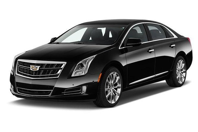 Private Arrival Transfer: MSY to Hotel or Cruise Port by Executive Sedan