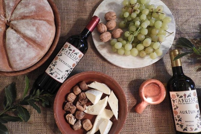 Visit to the museum and tasting of the ancient Roman wine