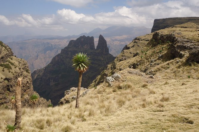 14 Days Northern Ethiopia Tour Package (Danakil, Gondar, Axum and More)