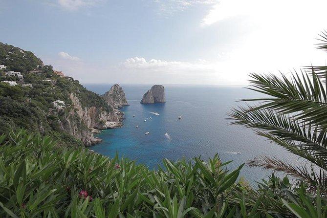 Day Trip to Capri from Positano