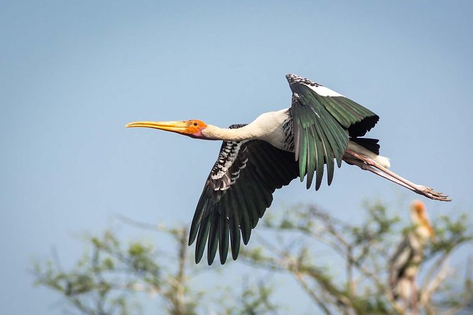 Visit to Keoladev Ghana Bird Sanctuary in Bharatpur & Fatehpur Sikri with Lunch